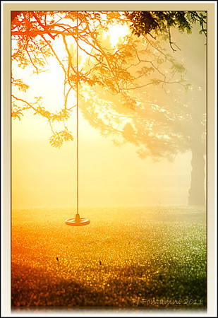 Sunrise Swing  A beautiful early morning sunrise streaming through the trees, grass glistening with dewdrops, an empty swing and complete silence.