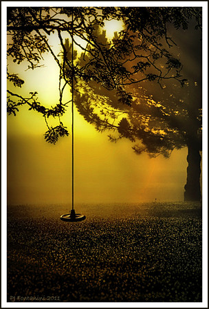 No Waiting  A beautiful early morning sunrise streaming through the trees, grass glistening with dewdrops, an empty swing and complete silence.